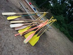 Paddles at Rest