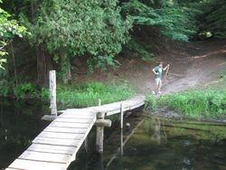 Bridge across Cleveland Creek