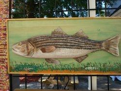ROCK FISH (STRIPPED BASS)