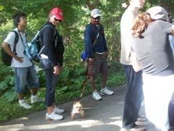 Bindi on the trail