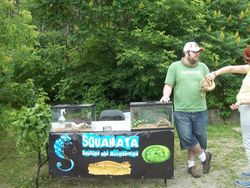www.squamata.ca
