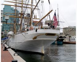 Eagle Visit Baltimore's Inner Harbor