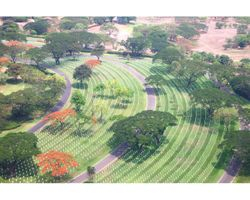 Manila Cemetery Overview