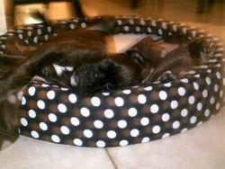 mavin is sleepy