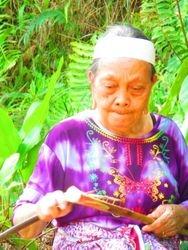 Pui Ingau