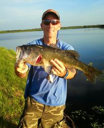 Sarasota, FL: August 2014