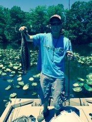 Potomac Snakehead, June 2014