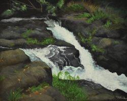Hoopii Falls Downstream, Kauai