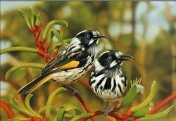 Striped Birds