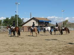 All Breed Hunter Under Saddle