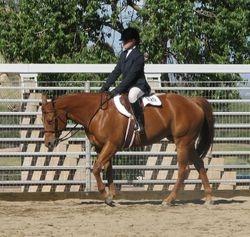 "Marilyn Van De Graaff riding ""Zips PocketRockerMMR"" owned by Dr. Richard McDonald"