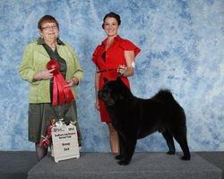 Sudbury District Kennel Club