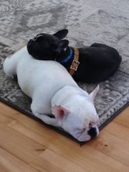 Napping with my sister Kylee