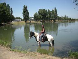 Jack & Vicki cooling off in the pond