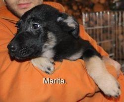 Marita taken 1 March 2013