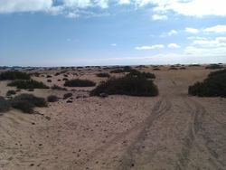 Nature Park of the Dunes of Corralejo