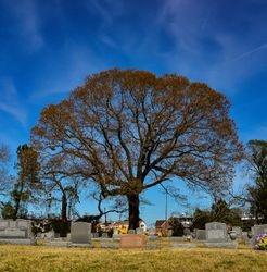 Powers, Denise Everlasting Shade Riverside Cemetery Norfolk Va.