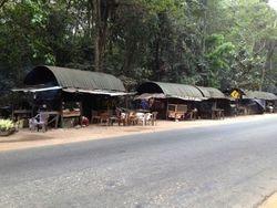 Na putu za Sigiriju