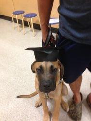 Zeus graduates first class