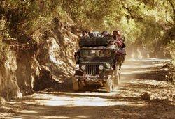 transport on Mt Victoria
