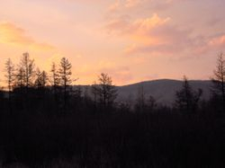 sunset at Capercaillie site