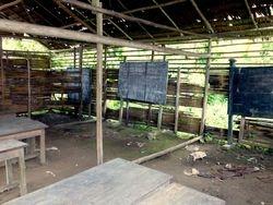 school, Kokolomboi, Peleng