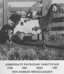 Ambergate Patrician Vanityfair
