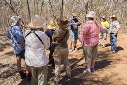 Tour of Buloke Woodland