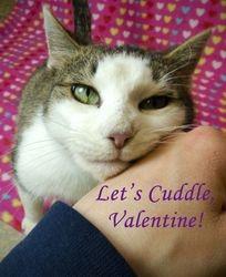 Keri's Valentine