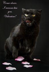 Marina's Valentine
