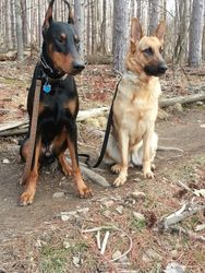 Kenta and Daisy during a hike