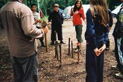 Log Piles 1
