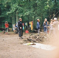 Log Piles 4