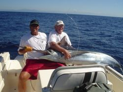 costa rica striped marlin