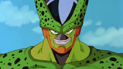 cell after absorbing with No.17
