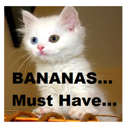 Bananas? Are you out of your MIND?! Awesome!!