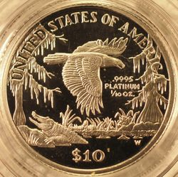 1999-W Platinum Tenth-Ounce Proof