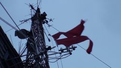 Warning Flags