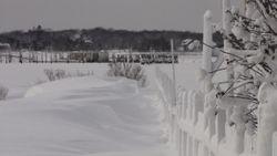 Frozen Bay and Beach