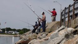 Father's Day fishing off the causeway,