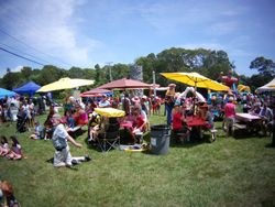 Summer Fest Color