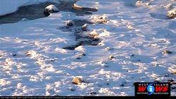 Waves Frozen In Time, Jan 8, 2014