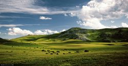 Mavrovo Landscape - Western Macedonia