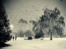 Snow in Skopje - Macedonia