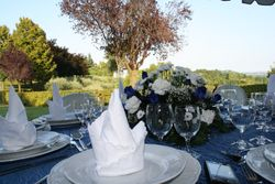 VILLA PETRIN caters to your events