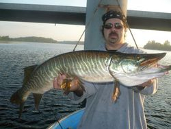 Muskie on the Rideau River