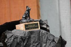 Judge's gift 2012