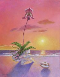 Beach Orchid