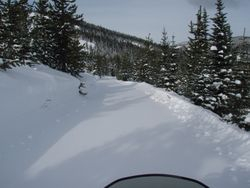 Trails to Cabin Creek West Yellowstone / Idaho