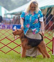 Best Puppy in Sweeps/ Victorianne